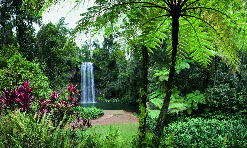 It's all on the table: your guide to the Atherton Tablelands