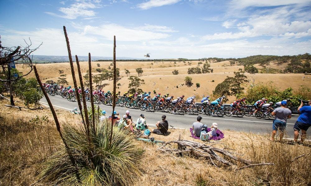 2019 Santos Tour Down Under Race Preview