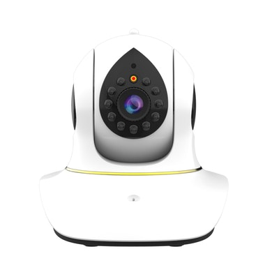 eDog Australia Pet Camera with Laser Pointer