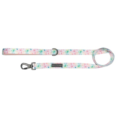 Big & Little Dogs Cotton Candy Dog Leash