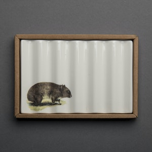 Soap Dish with Wombat