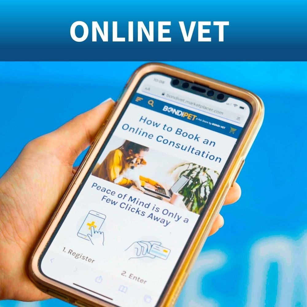 book online vet appointment
