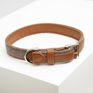 Molly Barker Hunter Dog Collar