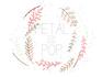 Petal and Pop