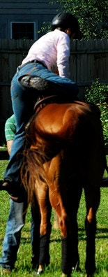 Meredith Manor: Equestrian Education: Choosing the Right Horse School