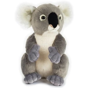 Tebby Bears  National Geographic Koala