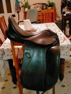 Black Anky Dressage Saddle 2012