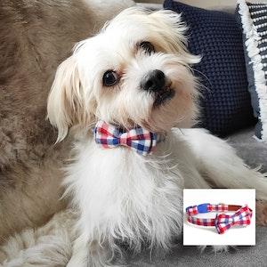 """Queenie's Pawprints Cotton Bowtie Dog Collar """"Check"""""""