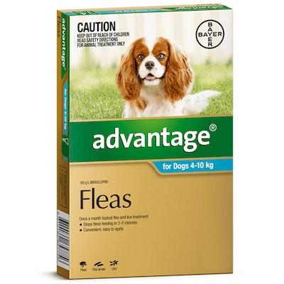 Advantage Medium Dog 4-10kg Teal Spot On Flea Treatment - 3 Sizes