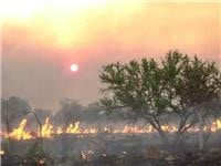 High fuel load safety first from WA Kimberley as tourists urged to be bushfire alert