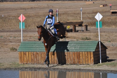My Virtual Eventing Coach: Focus is A Key Ingredient to Success