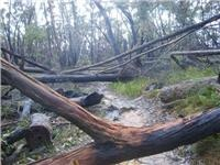 Wild weather brings significant damage to Grampians NP walking tracks