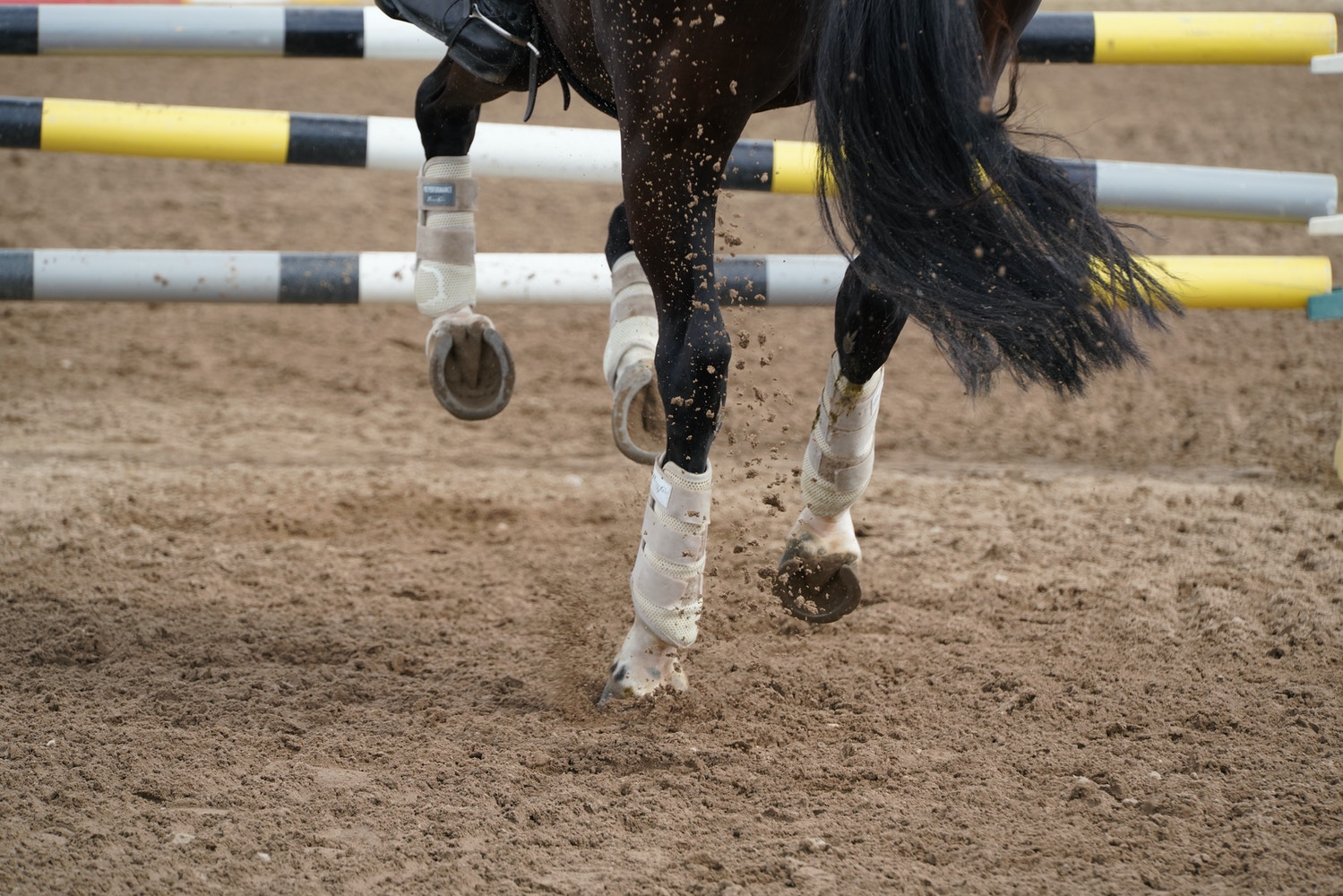 A Mental Trick to Help You to Think More About Your Horse's Hind Legs When Riding & Jumping