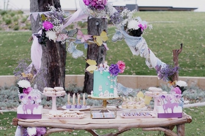 Fairy Unicorn Party