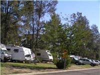 So many on the road. Popular drive-through sites at Yass Caravan Park