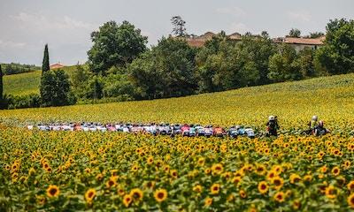 Tour de France 2021: Stage Fourteen Recap