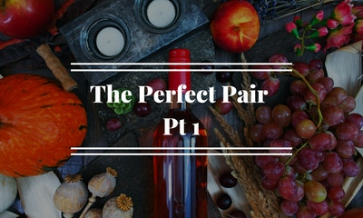 The Perfect Pair |  Part 1