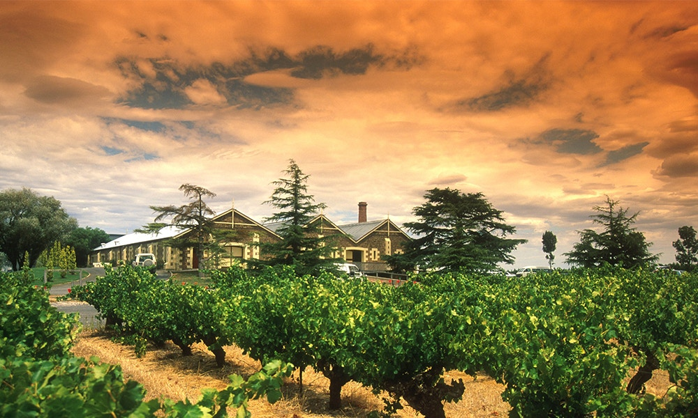 A Guide to Coonawarra