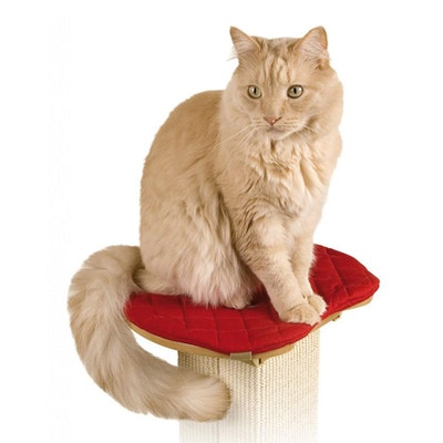 SmartCat Ultimate Cat Scratching Post Perch 36 x 32cm