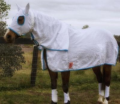 Capriole Equestrian Flag Cloth Hood Combo