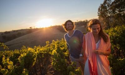 Winery Experience; Jacob's Creek