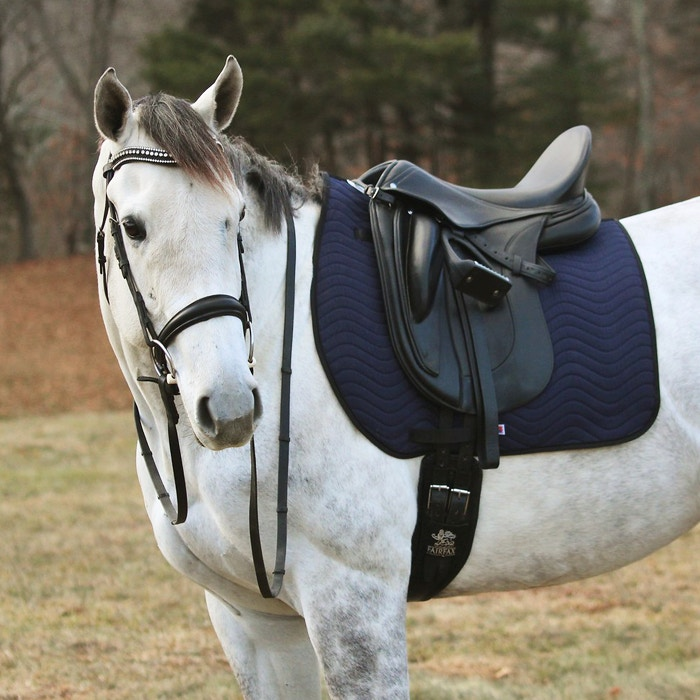 New Navy Saddle Pads from Draper Therapies