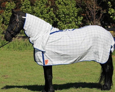 Capriole Equestrian Deluxe Royal Blue Summer Combo