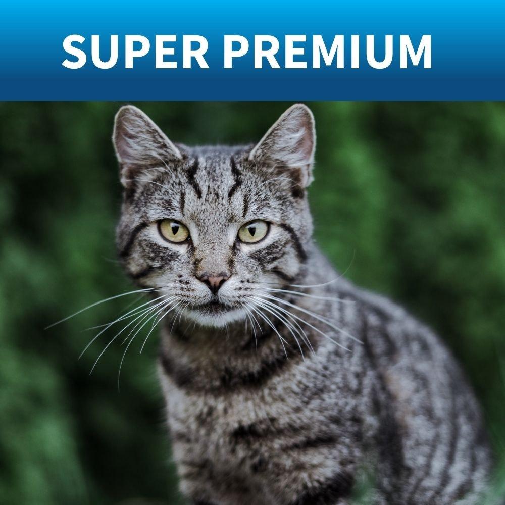 shop best premium food for cats