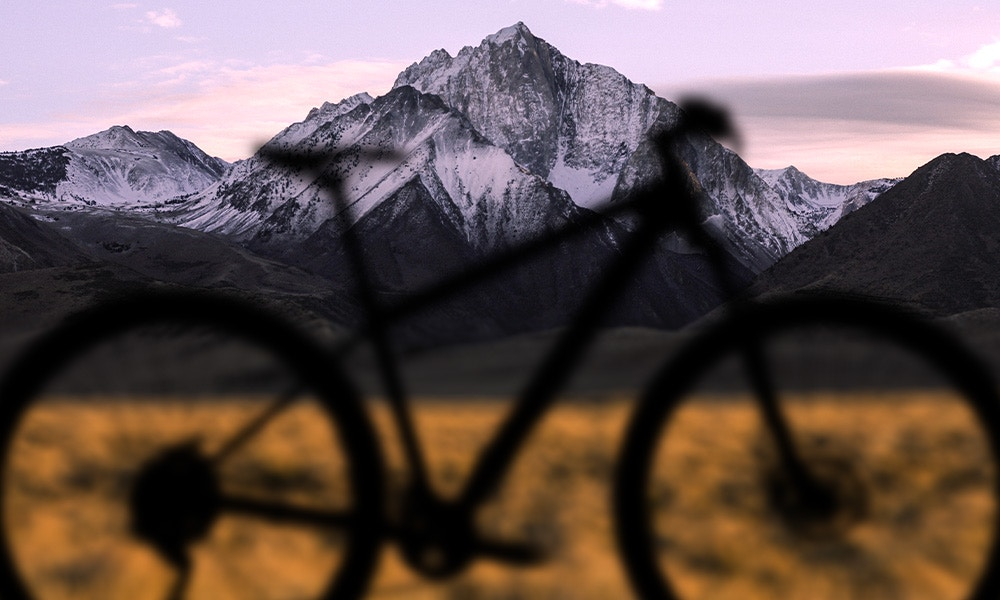 The Best Value Mountain Bikes Under $600