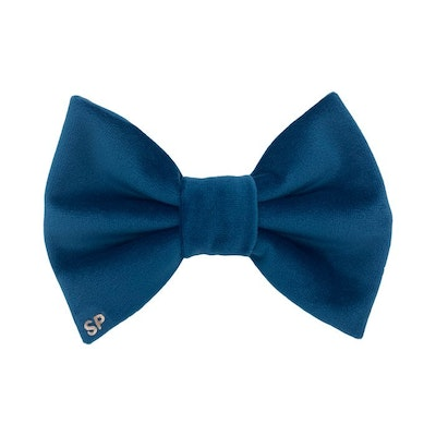 Swanky Paws Teal Bow Tie