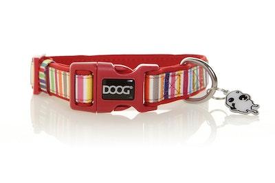 Doog Neoprene Dog Collar - Scooby