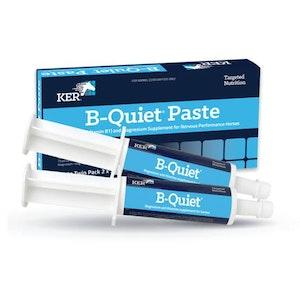KER B Quiet Paste Twin Pack 2x 30ml