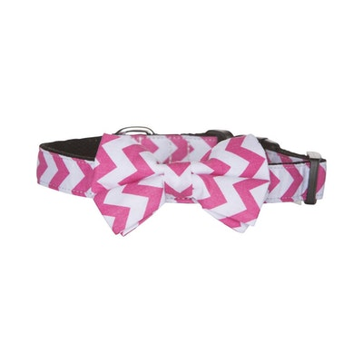 Hamish McBeth Bow Tie Dog Collar - Pink Chevron