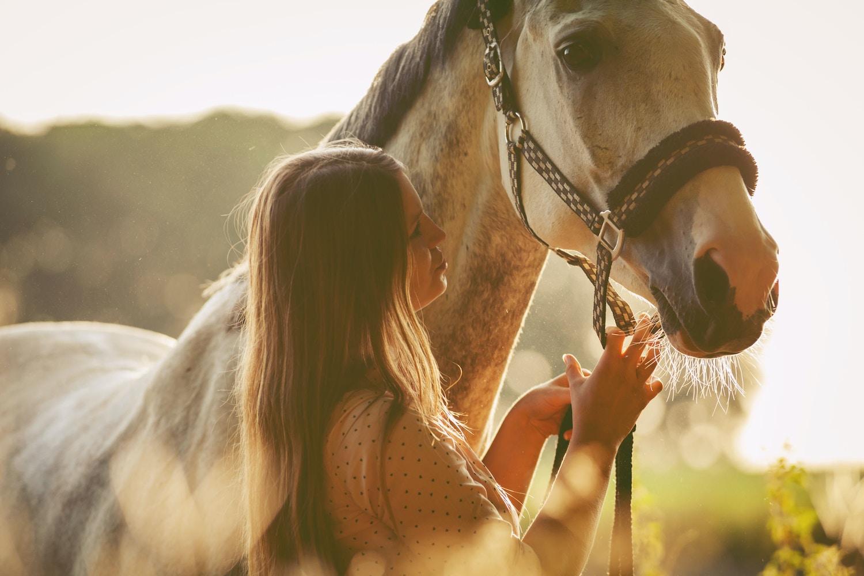 Exercises To Improve Horse Riding Skills