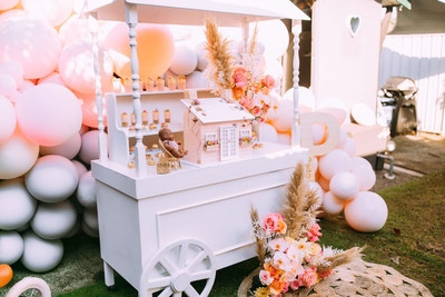 SWEET VINTAGE DOLL PARTY