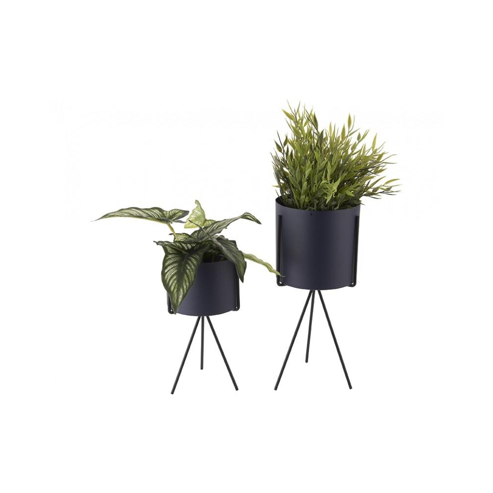 Pretty Cactus Plants  Metal Planter On Pedestal - Medium - Navy Blue - 12.5cm Diameter