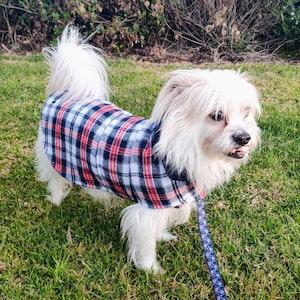 Queenie's Pawprints Warm Tartan Winter Dog Coat - Distinguished Gentleman
