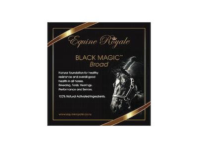 Equine Royale Black Magic Broad