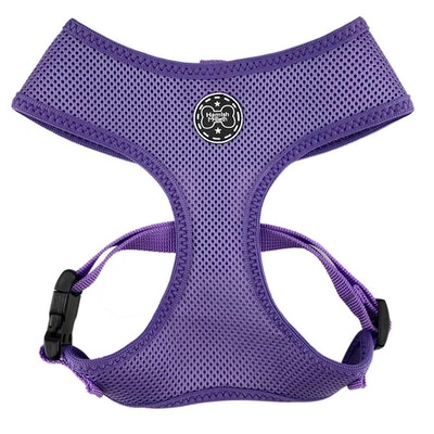 Hamish McBeth Purple Dog Harness