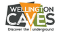 The Wellington Caves Complex
