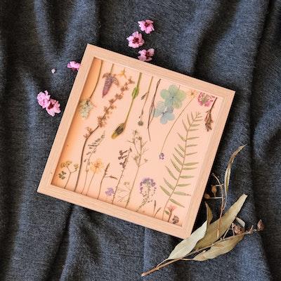 Florapeutic In The Meadow - Pressed Flower Art