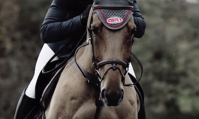 Equipe USA: The Saddle is Only as Good as the Saddle Fitter
