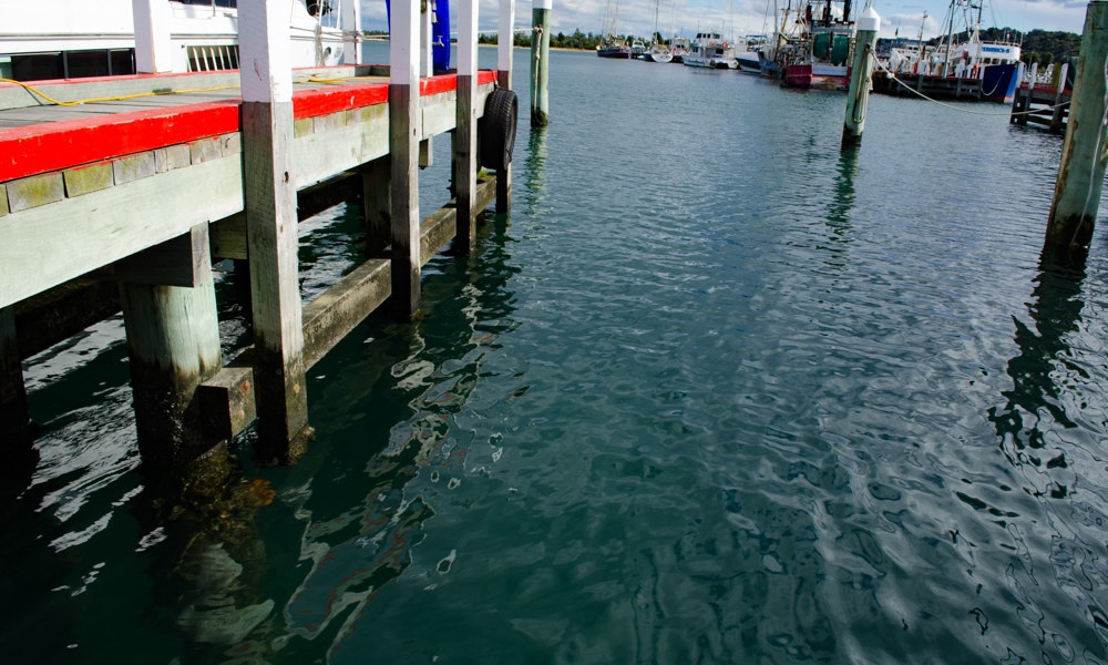 outdoria-lakes-entrance-local-fishing-advice-jetty-mussels-wood-ocean-fishing-2-jpg