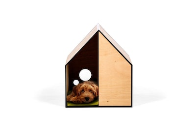 House of Pets Delight The Dog Room in Small